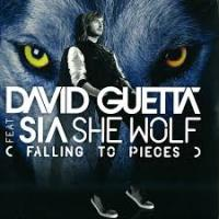 she wolf (falling to pieces)-david guetta ft sia